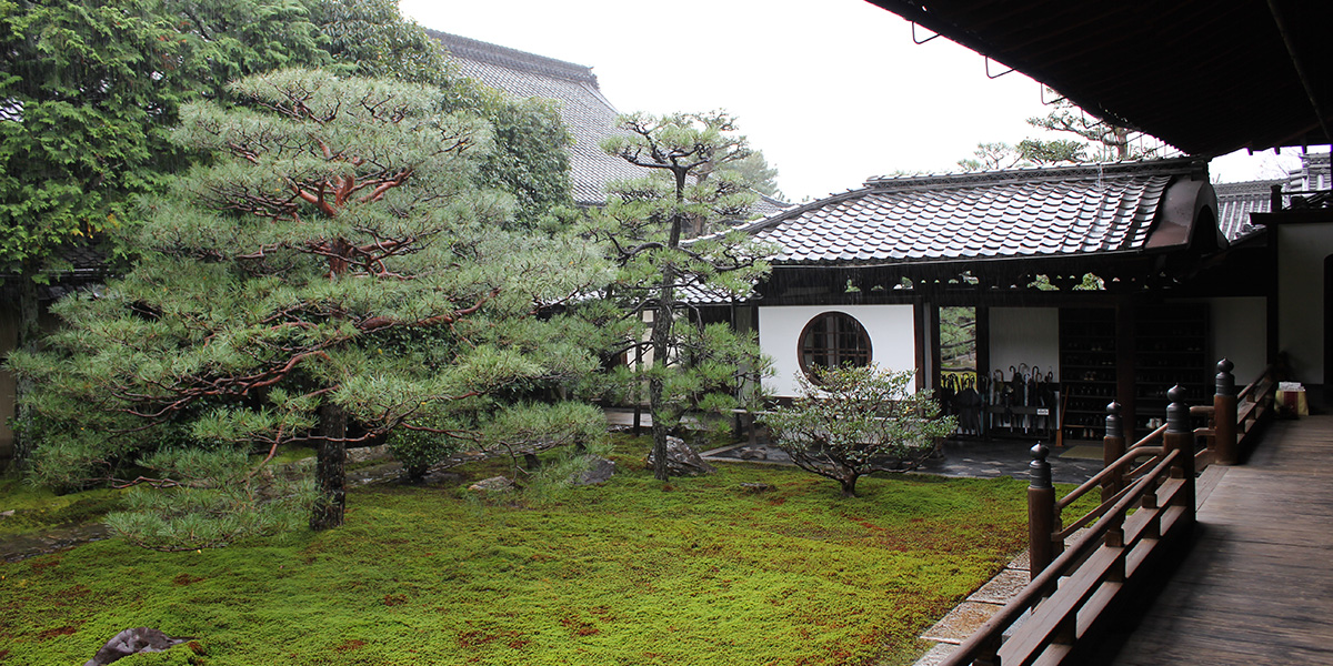 京都の樹木葬がある建仁寺の庭