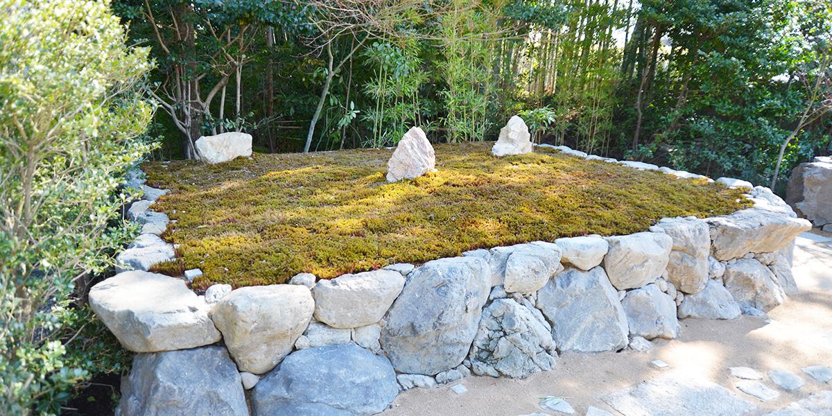京都の樹木葬がある大徳寺の正受院の墓苑